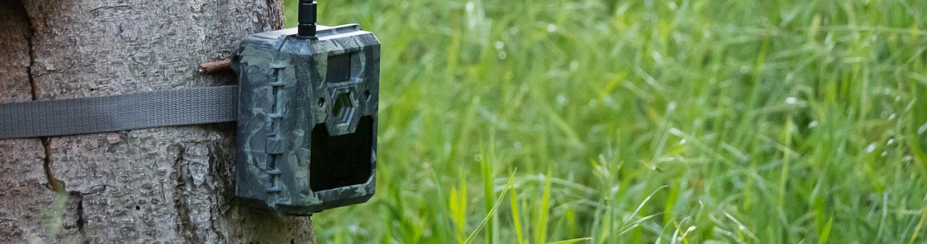 Wildkamera icucam4 mit Schutzklasse IP66