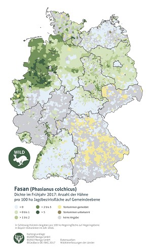 Gemeldete Vorkommen des Jagdfasans in Deutschland (nach Gemeinden)