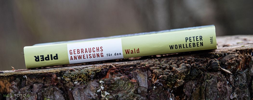 Buchrücken von Peter Wohllebens Buch Gebrauchsanweisung für den Wald
