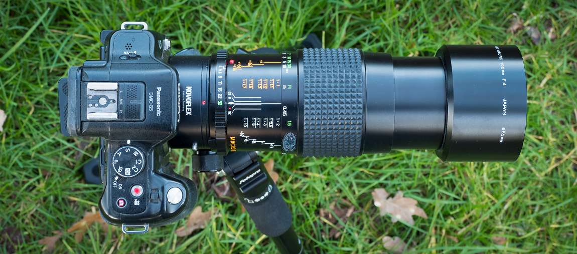 Der Crop-Faktor der Panasonic G5 (FourThirds-Sensor) beträgt 2x. Das ergibt mit dem Minolta MD 100mm f4 Makro eine kleinbildäquivalente Brennweite von 200mm