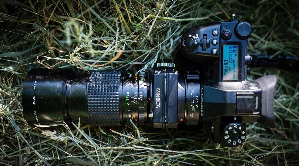 Der Crop-Faktor der Panasonic G9 (FourThirds-Sensor) beträgt 2x. Das ergibt mit dem Minolta MC 400mm f5.6 APO Tele Rokkkor und 2x Telekonverter eine kleinbildäquivalente Brennweite von 1600mm