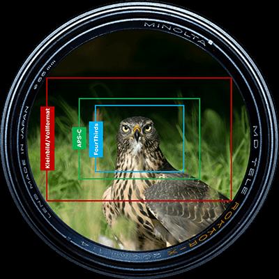 Vergleich der verschiedenen Sensorgrößes Vollformat, APS-C und FourThirds