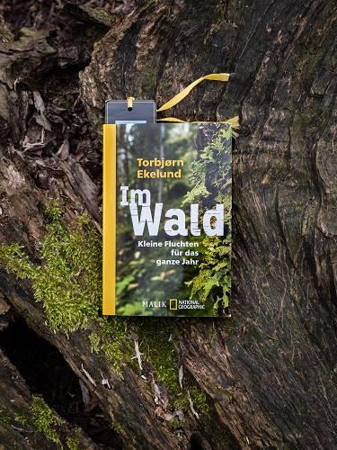 Buchrezension für das Buch Im Wald - Kleine Fluchten für das ganze Jahr von Torbjørn Ekelund