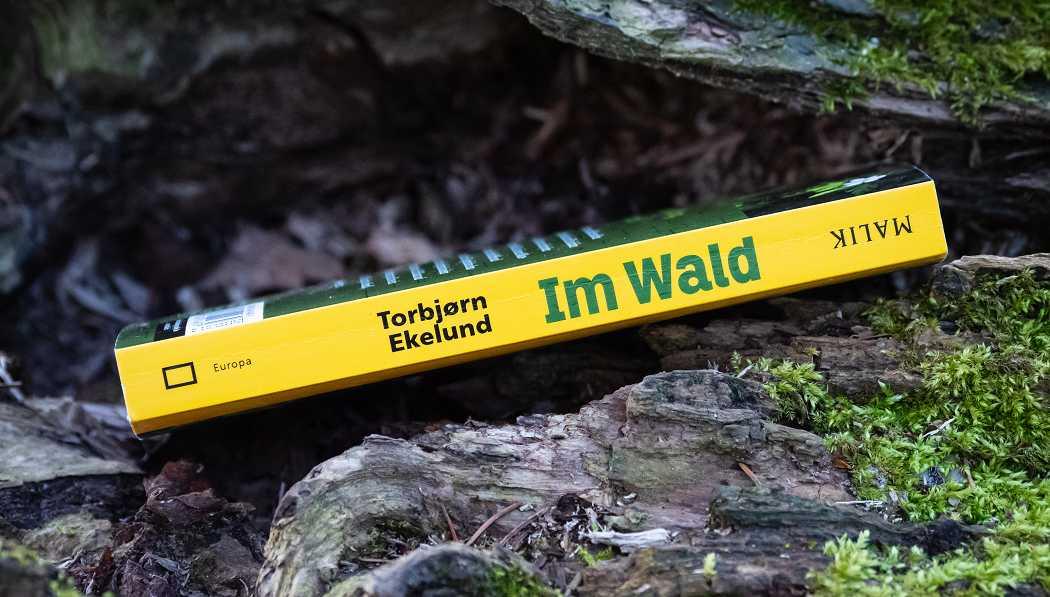 Buchrücken vom Buch Im Wald - Kleine Fluchten für das ganze Jahr von Torbjørn Ekelund