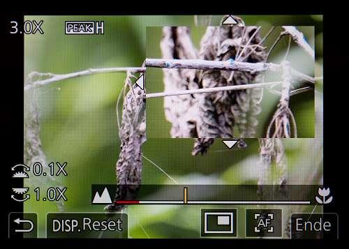 Focus Peaking und Bildschirmlupe an der Panasonic G9