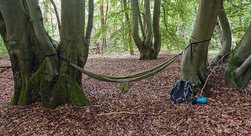 Hängematte im Wald bei einer Fototour