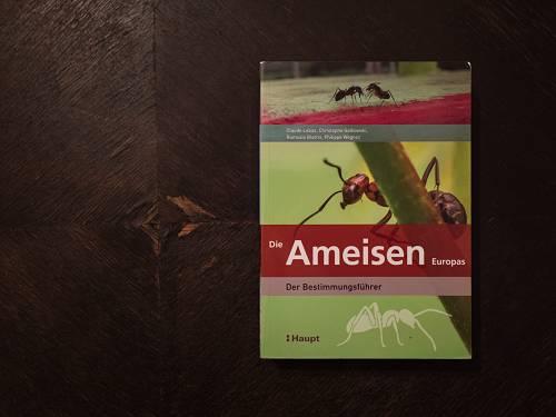 Ameisen Bestimmungsführer