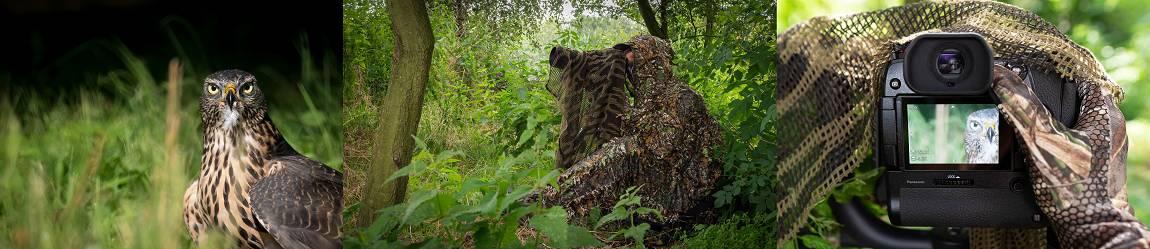 Links, Videos und Bücher rund um das Thema Wildtierfotografie